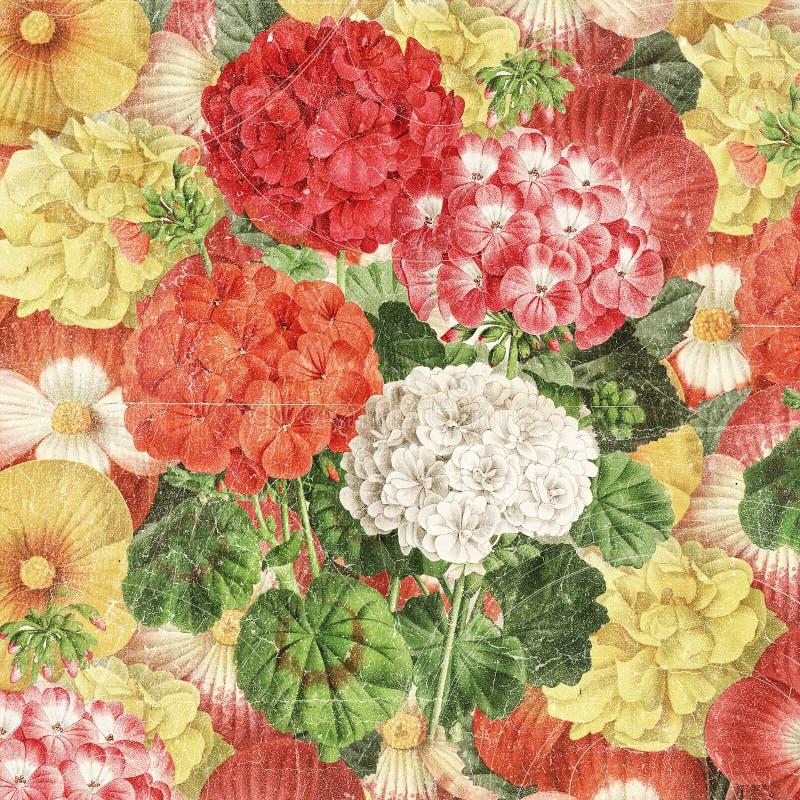 Rocznika botaniczny kwiecisty tło royalty ilustracja