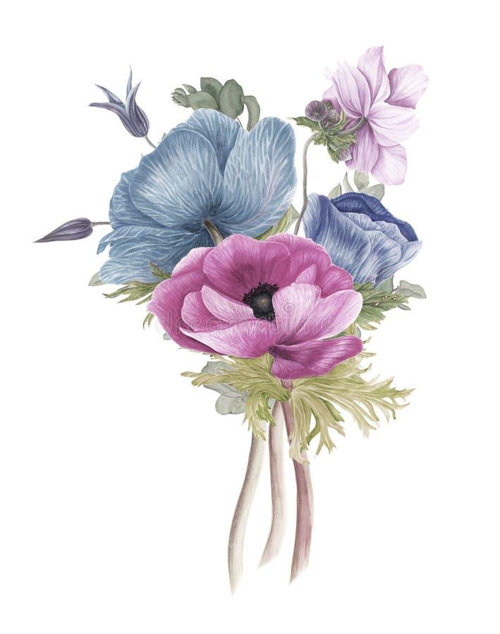 Rocznika bukiet kwiaty: anemony, clematis i gałąź eukaliptus, zdjęcia royalty free