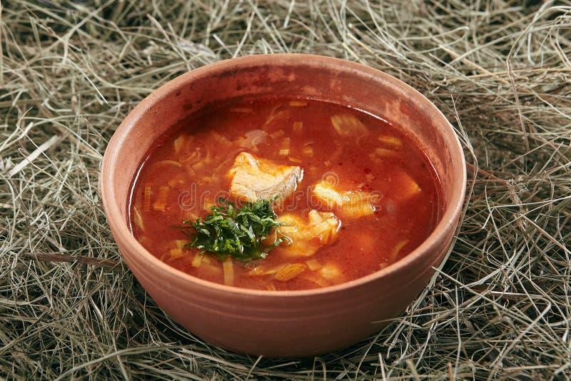 Rocznika Ceramiczny puchar rewolucjonistki ryby polewka z łososia i szczupaka żerdzią zdjęcia royalty free