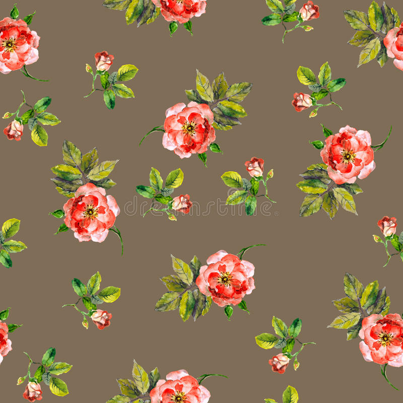 Rocznika częstotliwy bezszwowy wzór z różowymi różami akwarela royalty ilustracja
