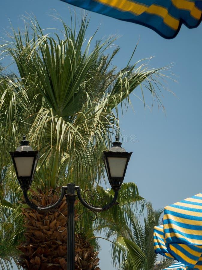 Rocznika czarny lampion na tle zieleni drzewka palmowe i niebo wśród stubarwnych barwionych plażowych parasoli zdjęcie royalty free
