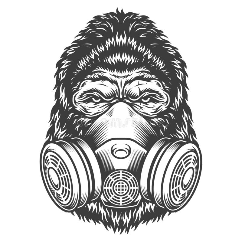 Rocznika goryla monochromatyczna głowa ilustracji