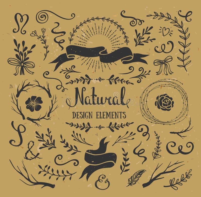 Rocznika graficzny ustawiający kwiaty, gałąź, liście i nieociosani projektów elementy, ilustracji