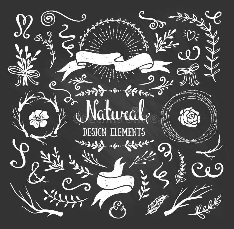 Rocznika graficzny ustawiający kwiaty, gałąź, liście i nieociosani projektów elementy, ilustracja wektor