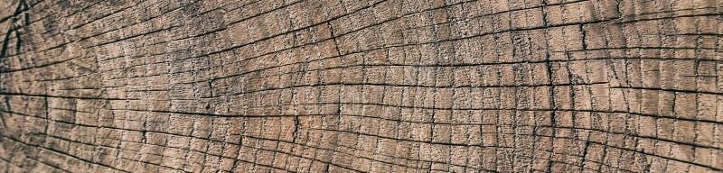 Rocznika grunge tło z krakingową starą drewnianą teksturą z 3D skutkiem, Drzewni pierścionki, dendrochronologia fotografia stock