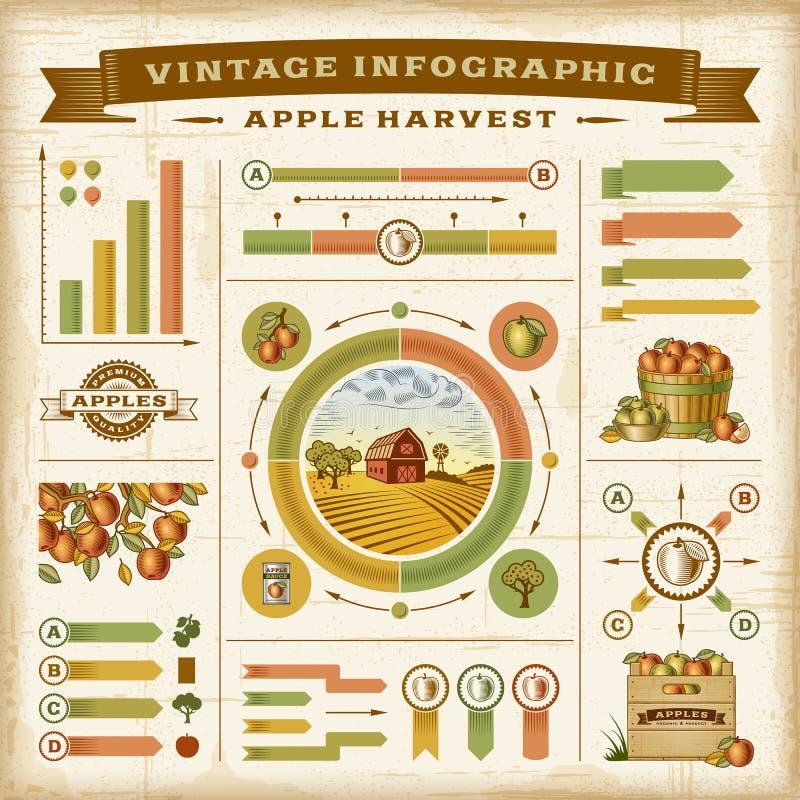 Rocznika jabłczanego żniwa infographic set ilustracja wektor