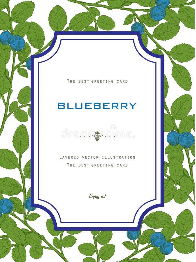 Rocznika kartka z pozdrowieniami z czarną jagodą z liśćmi Naturalny Organicznie ilustracji
