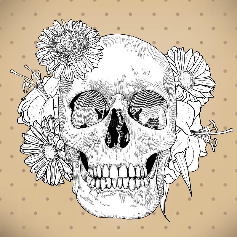 Rocznika kartka z pozdrowieniami z ręka Rysującą czaszką i ilustracja wektor