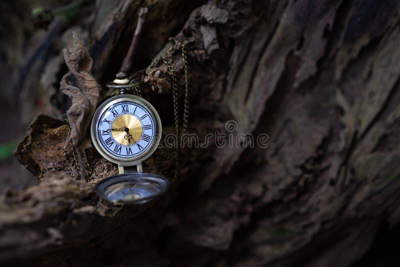 Rocznika kieszeniowy zegarek na starym drewnianym tle obrazy royalty free