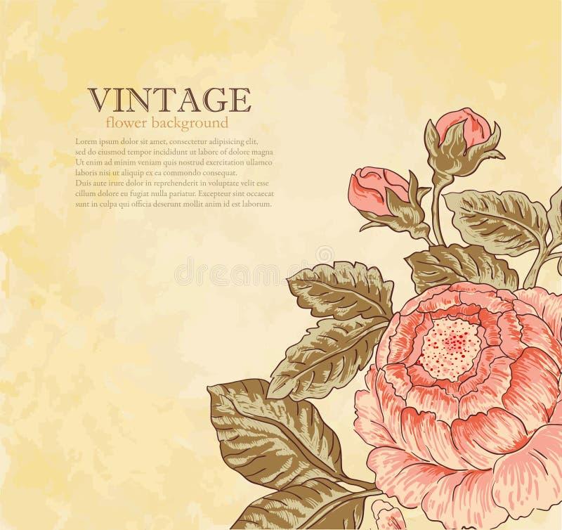 Rocznika kwiat na grunge tle ilustracja wektor
