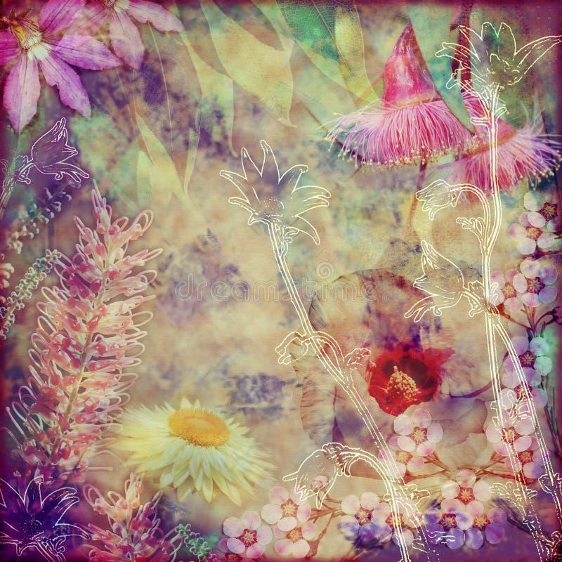 Rocznika kwiecisty tło z Australijskimi florami fotografia stock