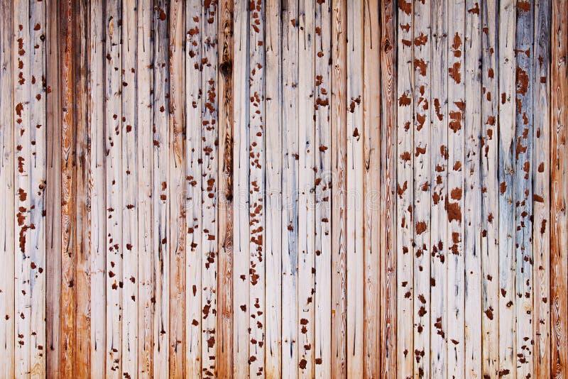 Rocznika lekki beżowy drewniany tło Stare kolorowe deski Drewniany tło zdjęcia stock