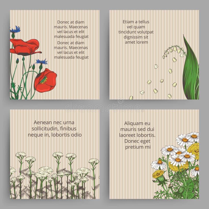 Rocznika sztandar z i rysujący kwiaty - kwieciści retro sztandary royalty ilustracja