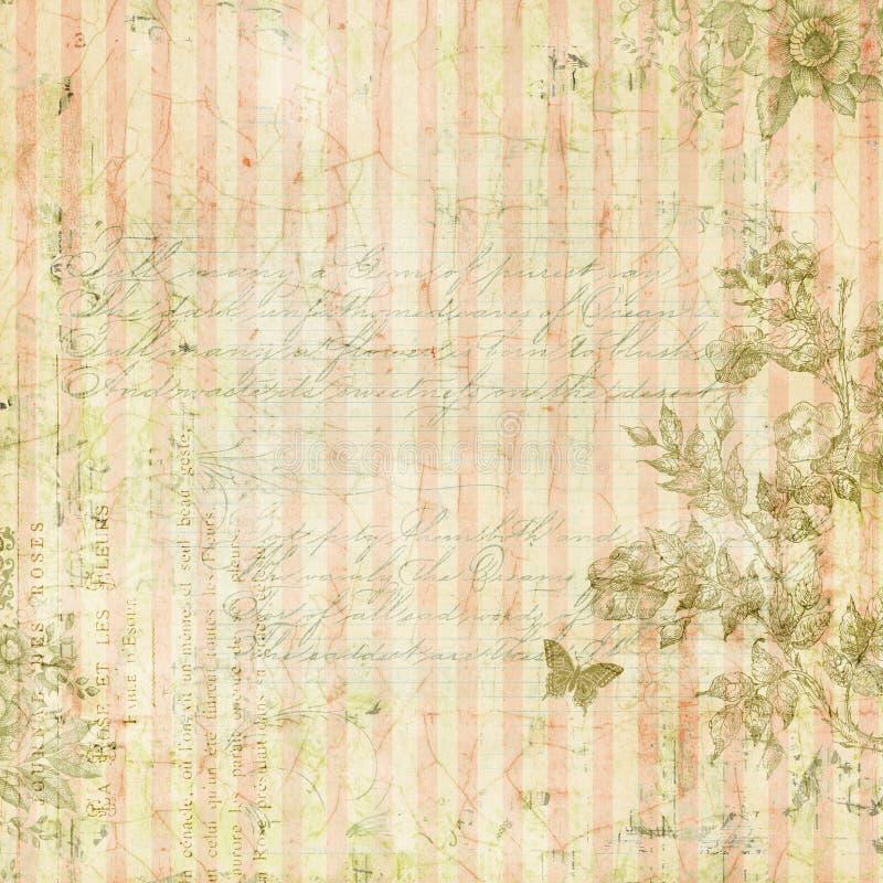 Rocznika szyka podławe menchie paskowali tło z kwiecistą ramą i motylem ilustracja wektor