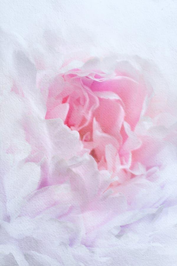 Rocznika tło kwiaty w akwarela obrazach ilustracji