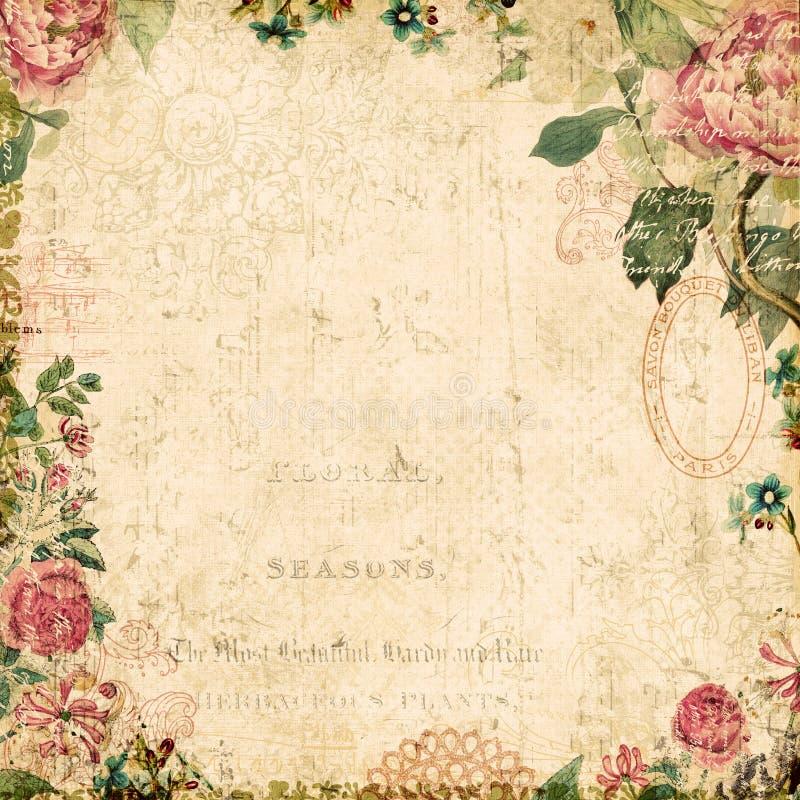Rocznika tło stylowy botaniczny kwiecisty obramiający ilustracja wektor