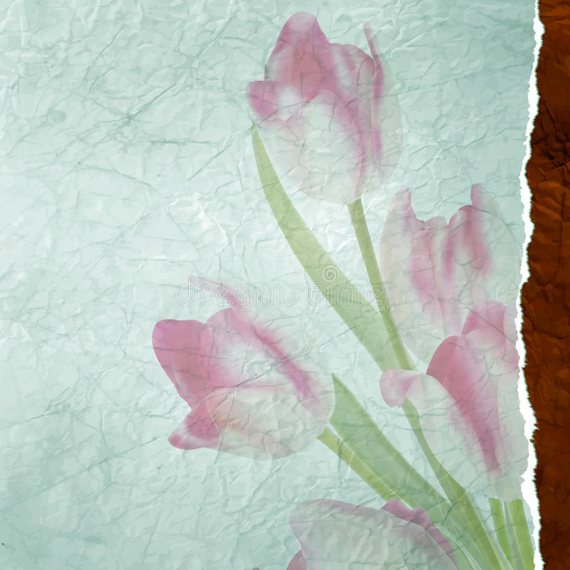 Rocznika teksta rama z tulipanami, stary papier. EPS 10 ilustracja wektor