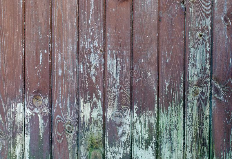 Rocznika wieśniak wietrzał stajni drewnianego tło z kępkami i nai fotografia stock