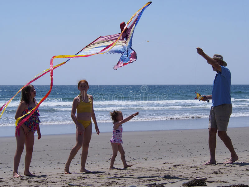 roczny 2008 Kwietnia frederick hrabstwa szaleństwa latających zabawnych ma latawca latawca siódmy sherando park do Wirginii ludzi zdjęcie royalty free