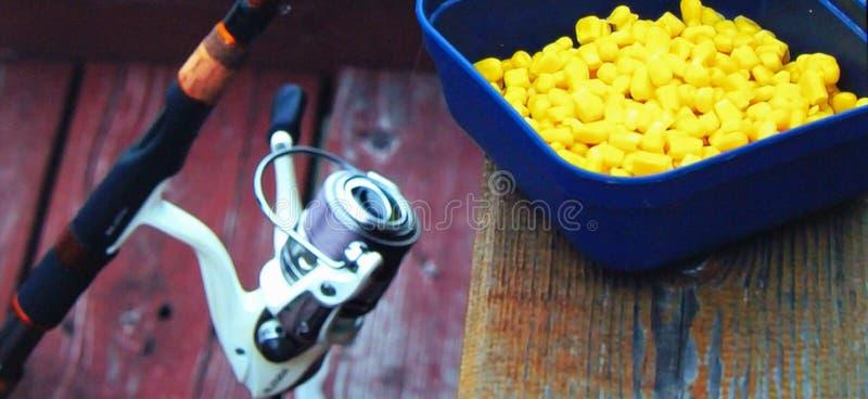 Rod com bobina e bandeja com milho para a isca fotografia de stock