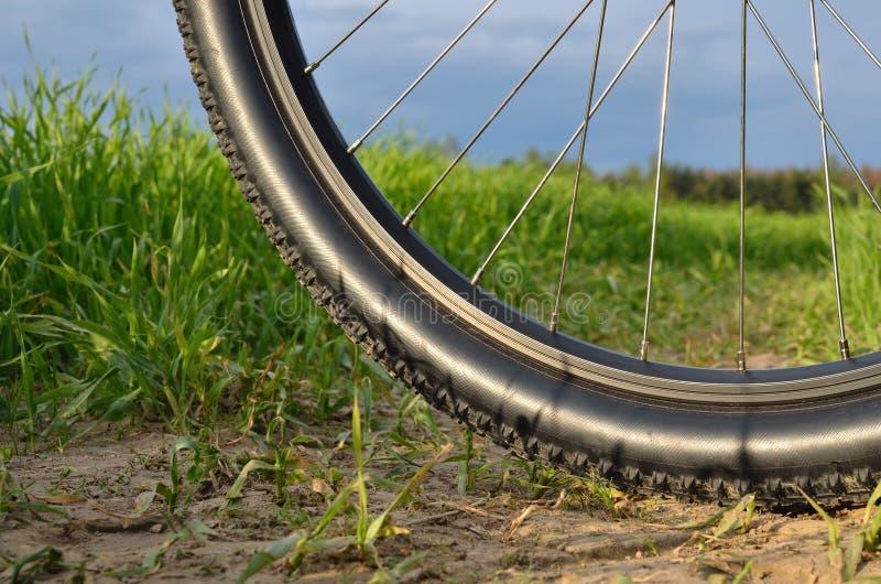 Roda da bicicleta de montanha fotografia de stock royalty free