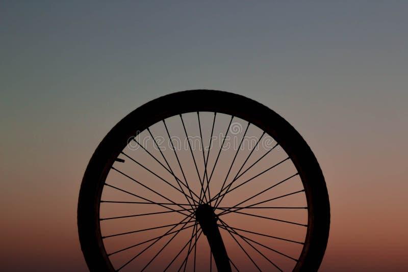 Roda de bicicleta no por do sol fotografia de stock royalty free