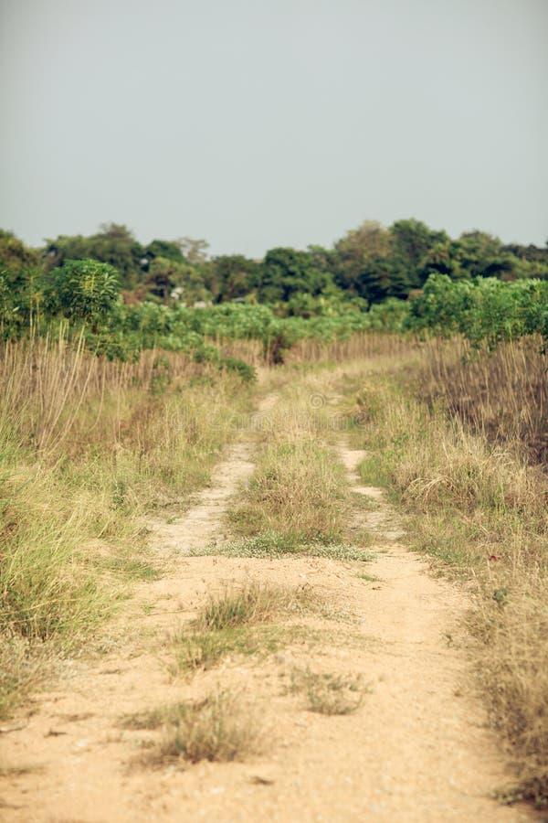 Roda de carro na estrada no campo e na região selvagem Obstáculo viajar conceito foto de stock royalty free