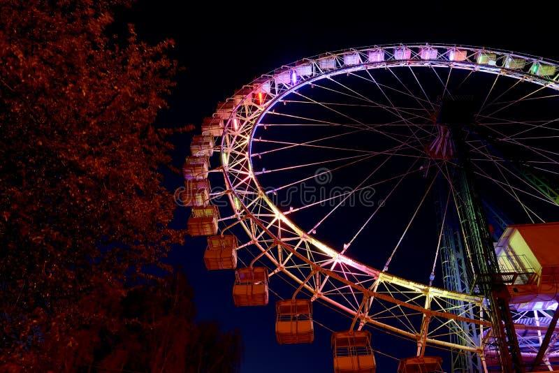 Roda de Ferris com iluminação multicolorido e árvores na noite fotos de stock
