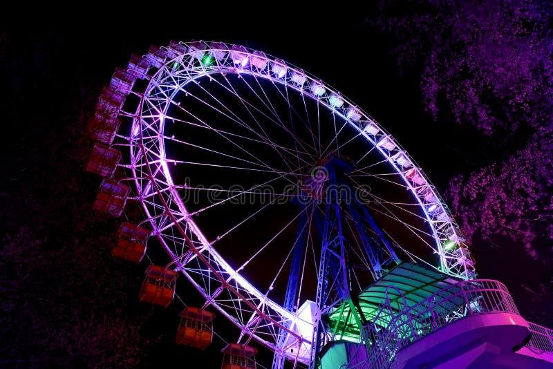 Roda de Ferris com iluminação roxa e árvores contra o céu noturno fotos de stock royalty free