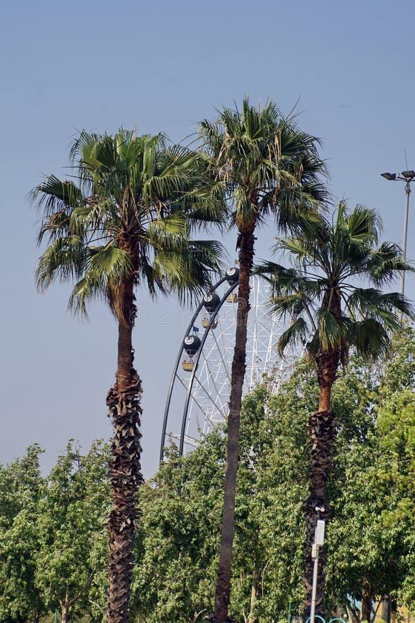 Roda de Ferris em um parque de diversões em Joanesburgo fotos de stock