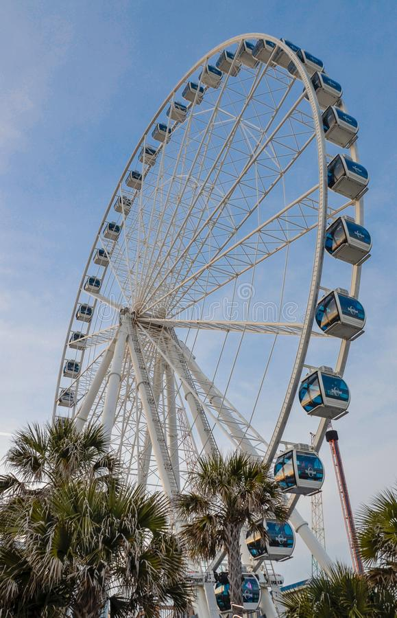 Roda de Ferris, palmeiras e céus azuis foto de stock royalty free