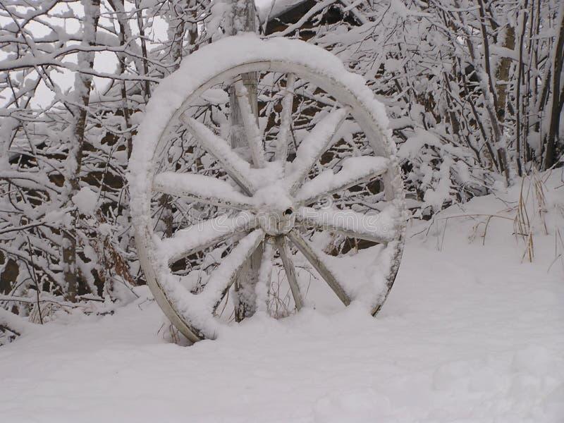 Roda de vagão abandonada   imagens de stock