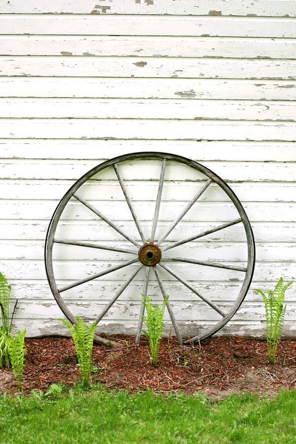 Roda de vagão de madeira antiga no fundo branco rústico foto de stock