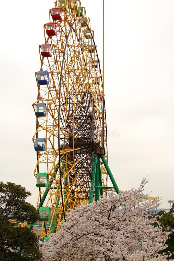 Roda e cereja de Ferris fotografia de stock
