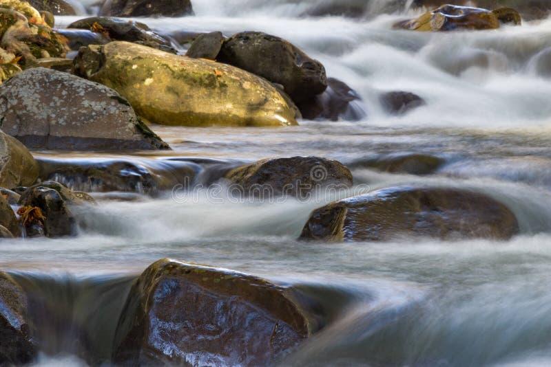 Rodar molha a conexão em cascata sobre e em torno de rochas em um córrego da montanha fotografia de stock