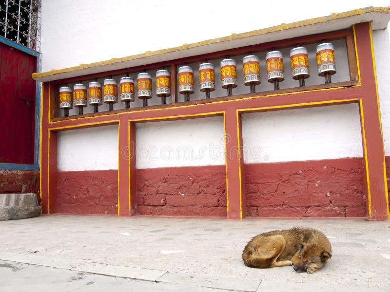 Rodas de oração para boas karmas em Sikkim, Índia foto de stock royalty free