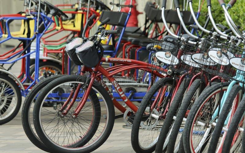 Rodas do suporte alugado da bicicleta do divertimento, do marquês de Marriott e do porto foto de stock