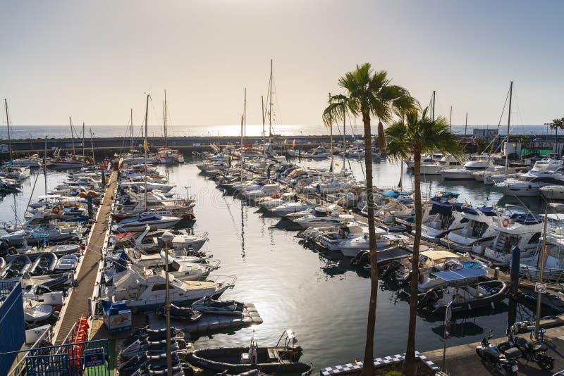 Roddport med större segelbåtar i Tenerife arkivfoto