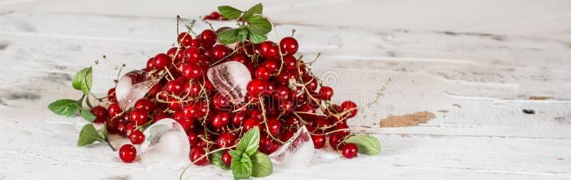 Rode aalbes met ijs en groene bladeren op witte houten achtergrond stilleven van voedsel Kubussen van ijs met bessen royalty-vrije stock fotografie