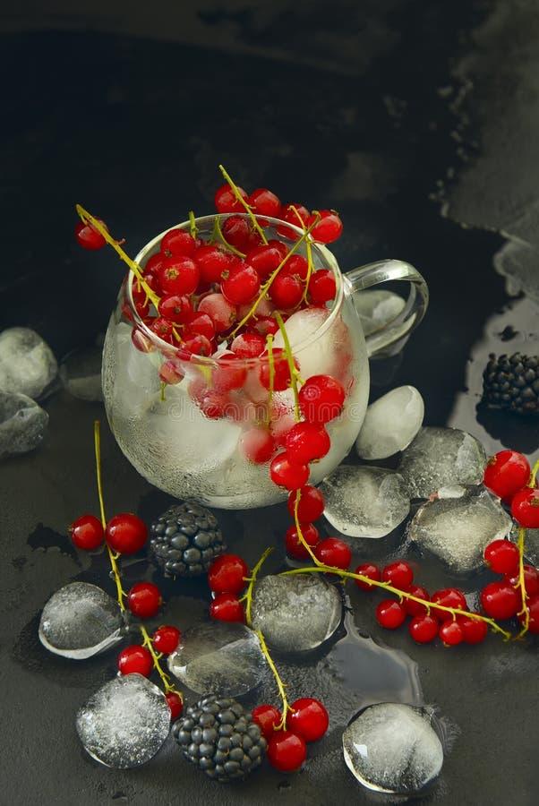 Rode aalbesbessen en braambessen en ijs royalty-vrije stock afbeeldingen