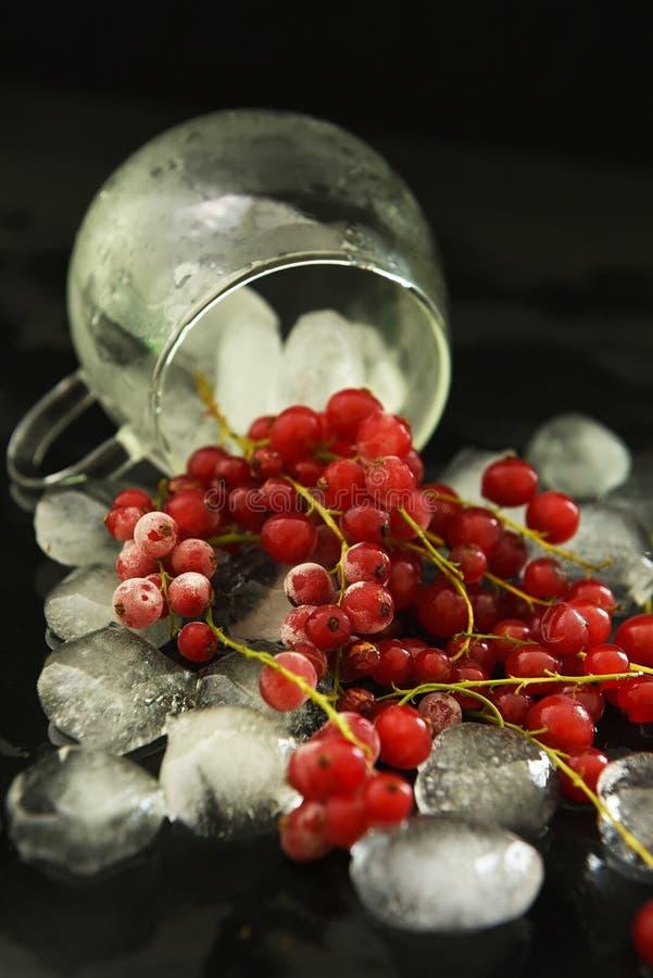 Rode aalbesbessen en braambessen en ijsblokjes op een donkere achtergrond stock foto