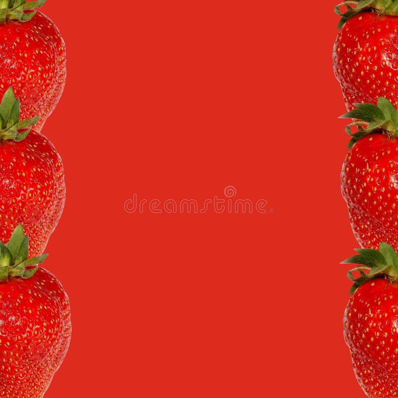 Rode aardbei op een rode achtergrond in de vorm van een kader stock afbeelding