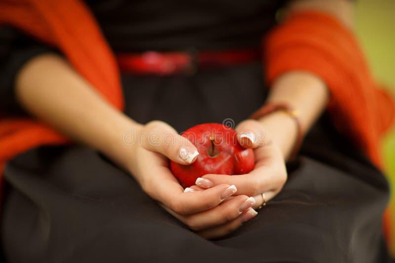 Rode appel ter beschikking dichte omhooggaand royalty-vrije stock foto's