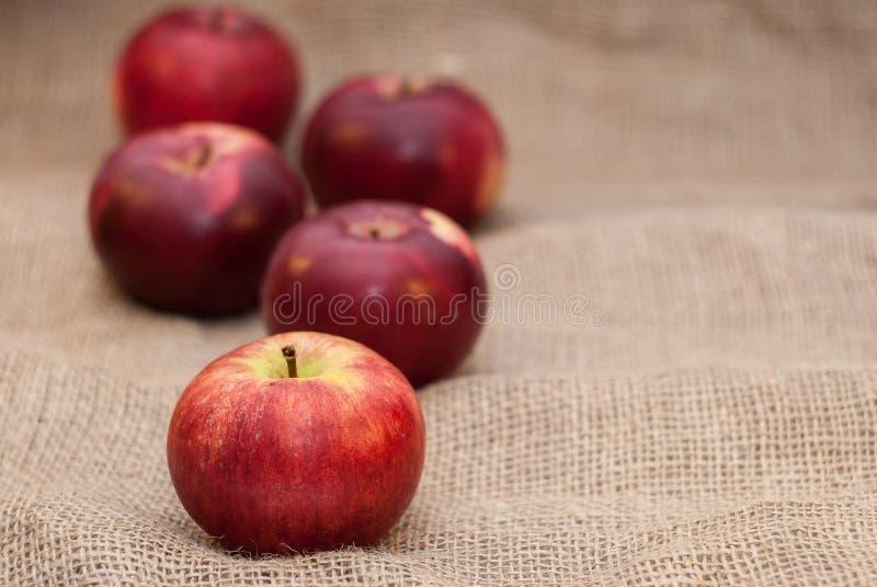 Rode appelen op juteachtergrond royalty-vrije stock afbeeldingen