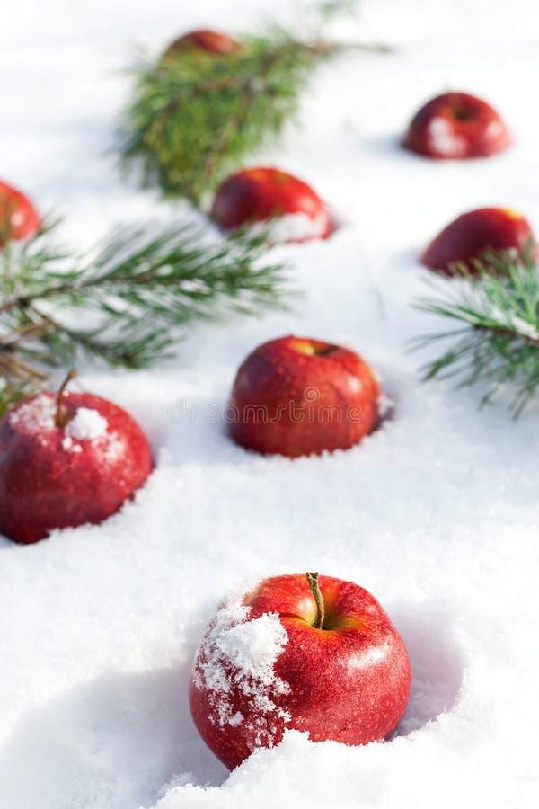 Rode appelen op witte sneeuw royalty-vrije stock foto