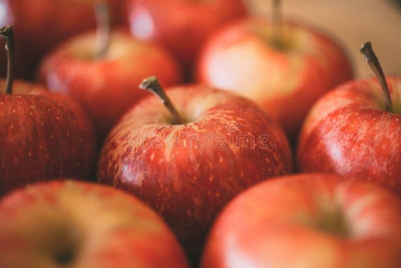 Rode appelenachtergrond Macromening van rode verse appelen als textuur en achtergrond voor ontwerp royalty-vrije stock afbeeldingen