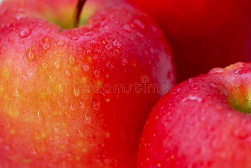 Rode appelenmacro stock afbeeldingen