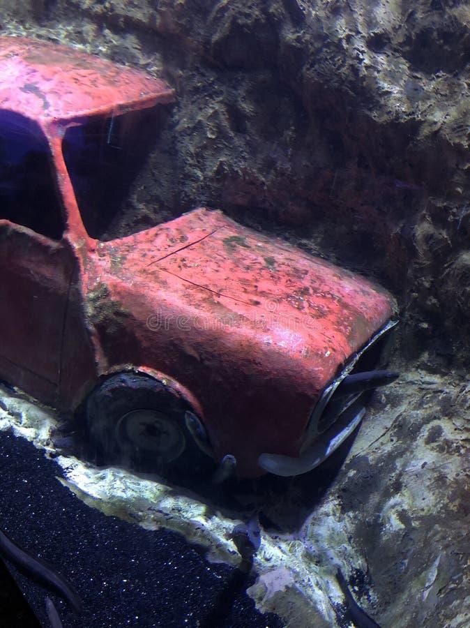 Rode auto & x28; underwater& x29; royalty-vrije stock fotografie