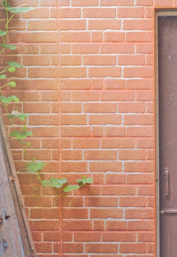 Rode bakstenen muur voor de ingang aan de deur, royalty-vrije stock foto