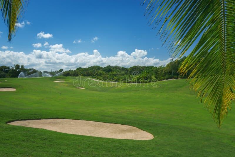 Rode bal op T-stuk, ondiepe DOF Mooi landschap van een golfhof met palmen stock foto's